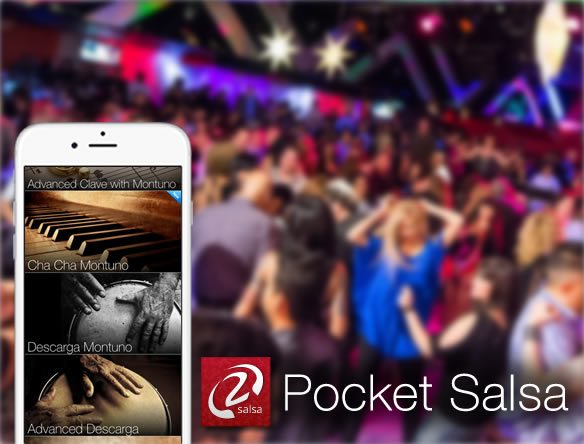 Modernistik Project: Pocket Salsa